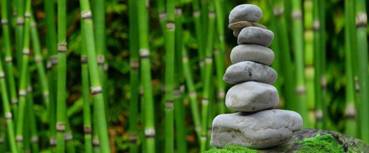 Emotionale Frische und Lebensbalance